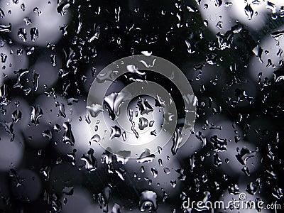 Macro - humedad en foco