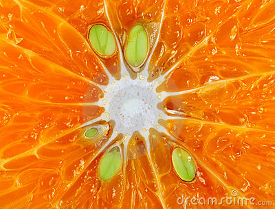 macro orange details