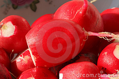 Macro of peeled moist radishes