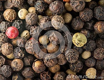 Macro photo of mixed peppercorn seeds
