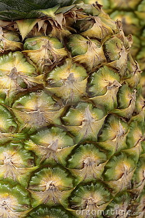 Macro pineapple background