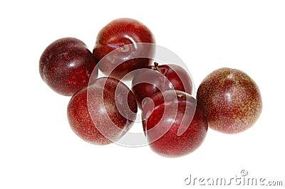 Macro plums