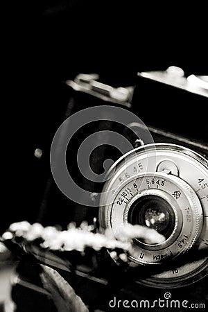Macro shoot
