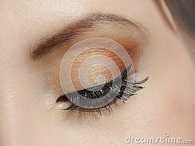 Macro shot of eye with brown make-up