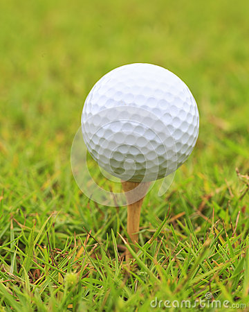 Macro shot of golf ball on wood tee
