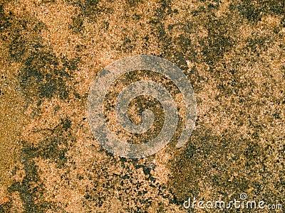 Macro texture - stone - mottled