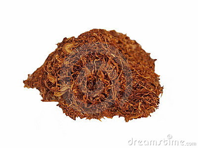 Macro Tobacco on white background
