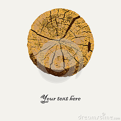 Macro vector illustration of a tree cut
