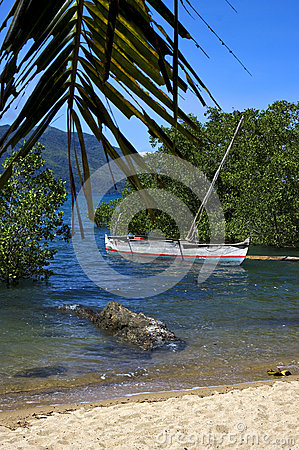 Free Madagascar Nosy Be Rock  Branch Boat Palm Lagoon And Coastline Stock Images - 28226794