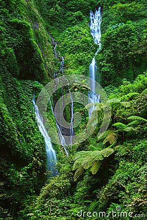 Free Madakaripura  Waterfall, East Java, Indonesia Royalty Free Stock Photos - 30743838