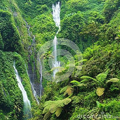 Free Madakaripura Waterfall In East Java, I Royalty Free Stock Photo - 32476855