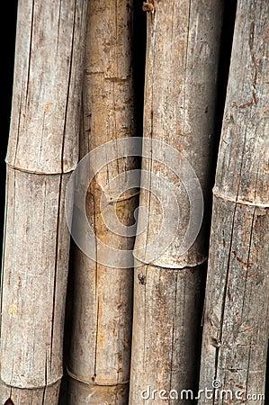 Madeira de bambu da cerca - textura