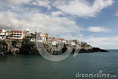 Madeira detail