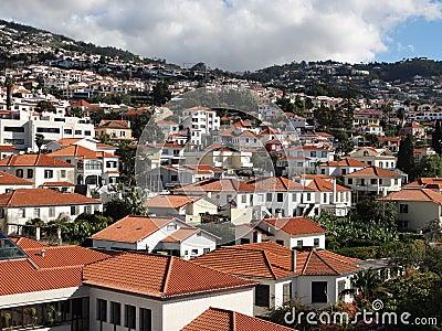 Madeira scene