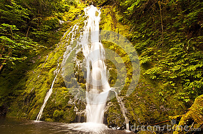 Madison falls in olympic national park