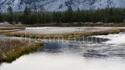 Madison River in fall. The Madison River in western Yellowstone National Park with a light dusting of snow in the fall. Camera passing right to left stock video