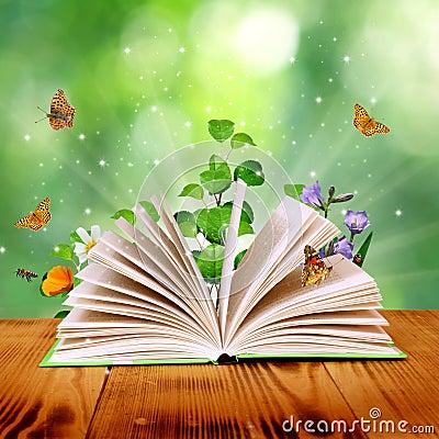 Free Magic Book Stock Photography - 28682112