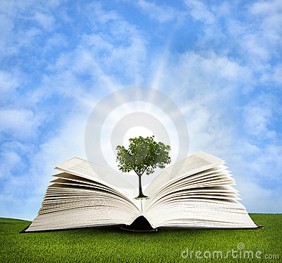 Magic book with green tree