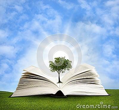 Magic book with green tree