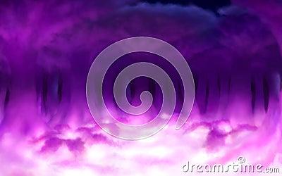 Magic cloud forest