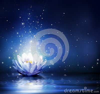 Free Magic Flower On Water - Blue Stock Images - 42799824