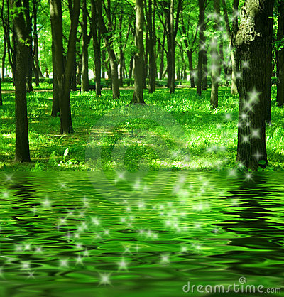 Free Magic Forest Near The River Royalty Free Stock Photography - 2608107