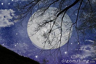 Magic night view