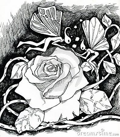 Magic rose and fairies