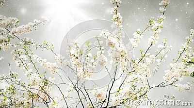 Magic spring