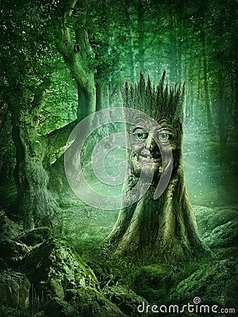 Free Magic Stump Royalty Free Stock Image - 47672166