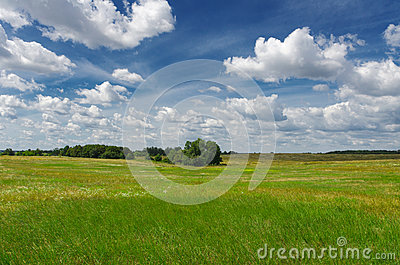 Magic Summer Landscape. Windows background style.