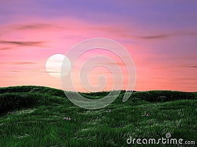 Magic summer sunrise