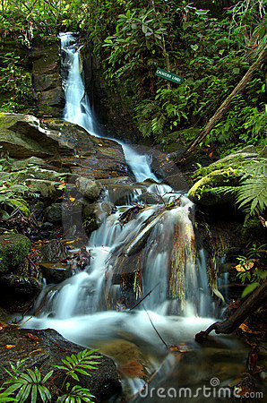 Free Magic Water Cascade Royalty Free Stock Photo - 2600375