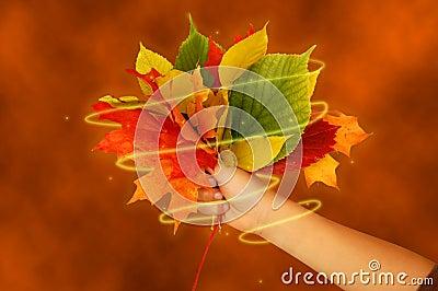 Magical fall bouquet