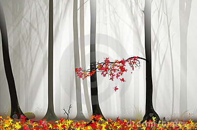 Magical forest illustration with fog and lights