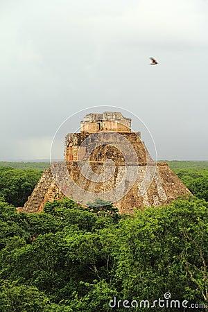 Magician pyramid III