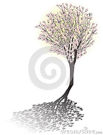 Magnolia blossom tree with shadow Vector Illustration