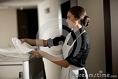 Maid At Work
