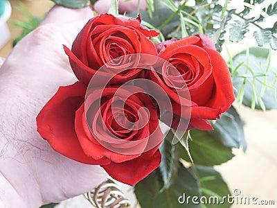 Main avec des roses