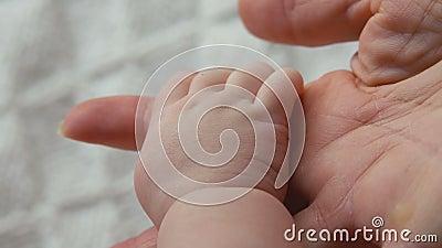 Main du ` s de bébé dans la main d'un adulte banque de vidéos