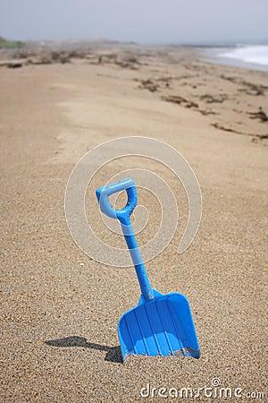 Maine Atlantic Beach and Toy