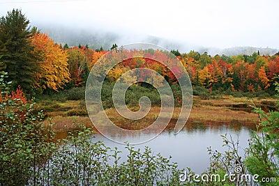 Maine fall foliage & pond