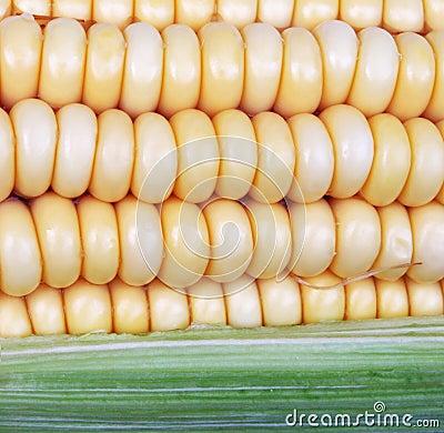 Mais auf Pfeiler