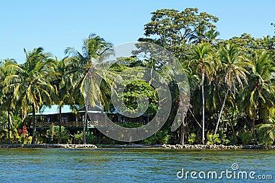 maison de bord de mer avec le jardin tropical photo stock image 39823263. Black Bedroom Furniture Sets. Home Design Ideas