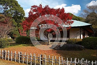 Maison de thé japonaise