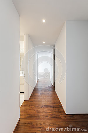 maison moderne couloir photo stock image 40913444. Black Bedroom Furniture Sets. Home Design Ideas
