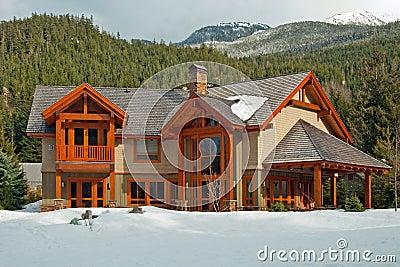 maison r veuse en bois am ricaine neuve photo stock image 19169730. Black Bedroom Furniture Sets. Home Design Ideas