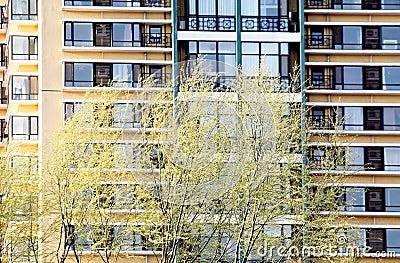 Maisons résidentielles au printemps