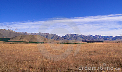 Maize fields frame New Zealand mountains
