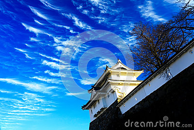 Maizuru Castle of Kofu, Japan.